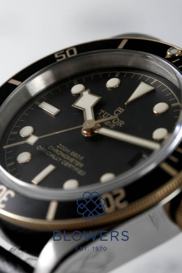 Tudor Black Bay 79733N