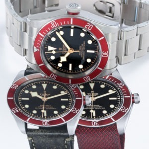 Tudor watches feature