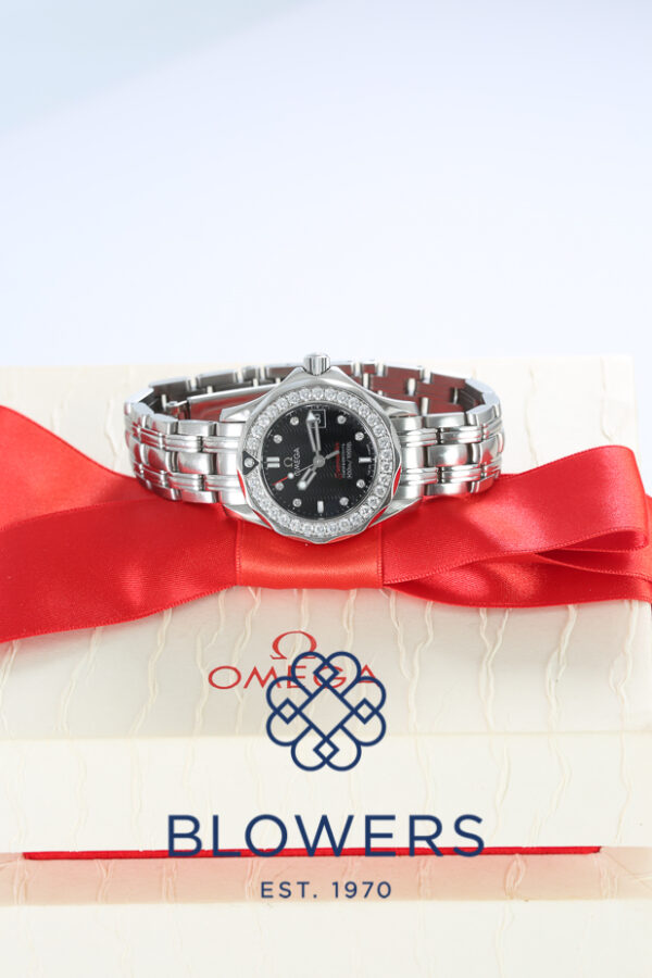 Omega Seamaster Professional 212.15.28.61.51.001
